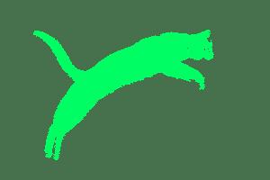 cat_green