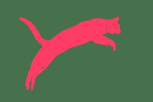 cat_pink