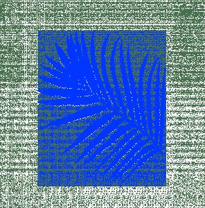 plante_blue
